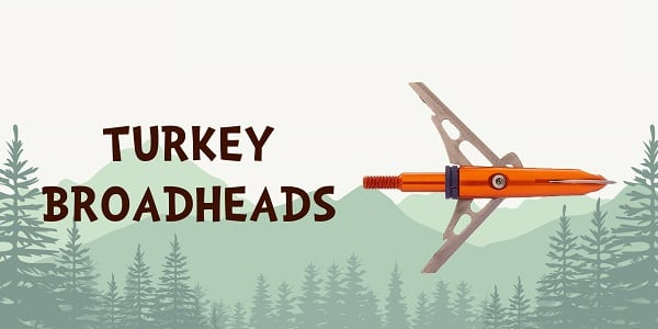 Best Turkey Broadheads
