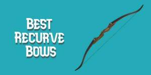 Best Recurve Bows