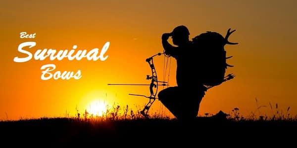 Best Survival Bows