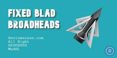 Best Fixed Broadheads